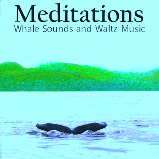Meditations Whales Waltz Music
