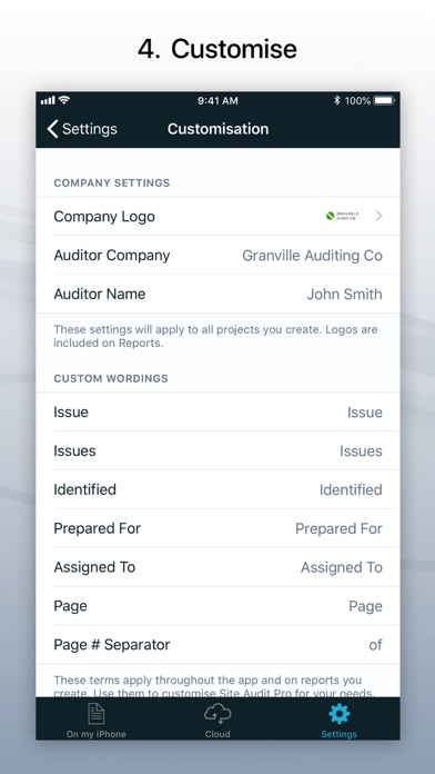 Site Audit Pro review screenshots