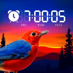 Wecker mit Musik – Schlaf App