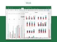 Microsoft Excel ipad images