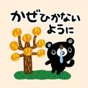 BURAKUMA-Daily (AUTUMN)