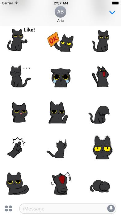 Animated Grumpy Black Cat screenshot 3
