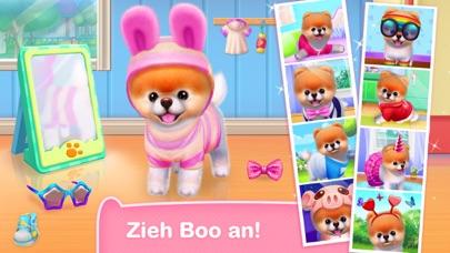 Boo: der süßeste Hund der WeltScreenshot von 2