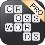KruiswoordRaadsel 10 Pro
