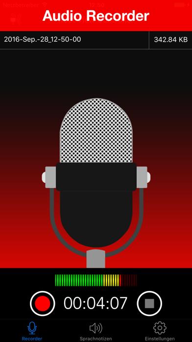 Voice Recorder Lite: Record HDScreenshot von 1