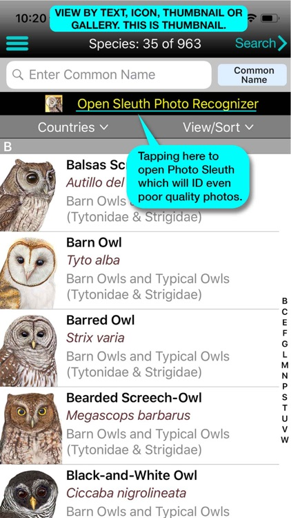 iBird Lite Guide to Birds