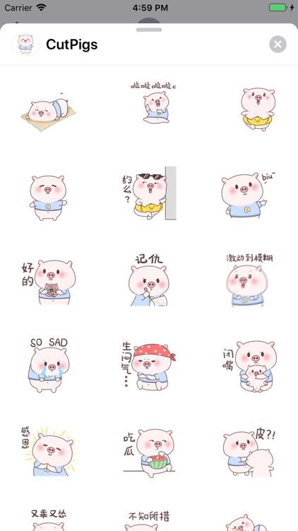小猪表情包