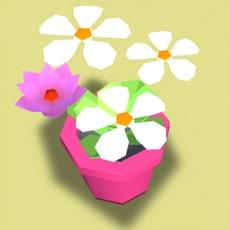 Activities of Flower The Garden