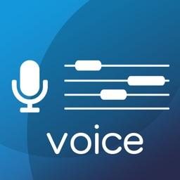 VOICE TUNER PRO 13