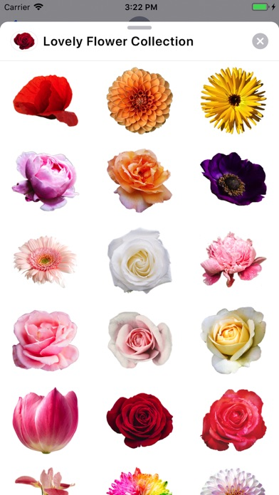 Lovely Flower Collection app image