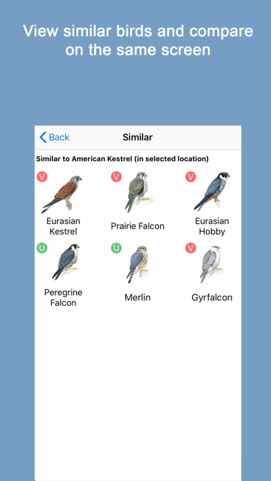 Sibley Birds 2nd Edition Screenshot