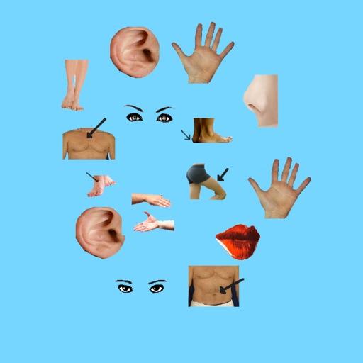 Body Parts - Basic