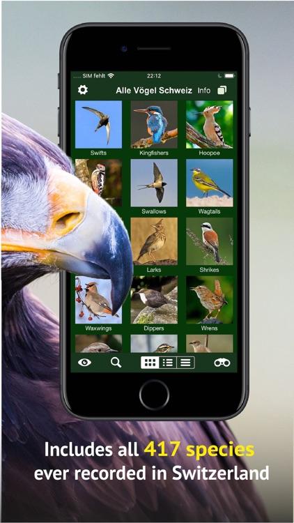 All birds CH - photo guide