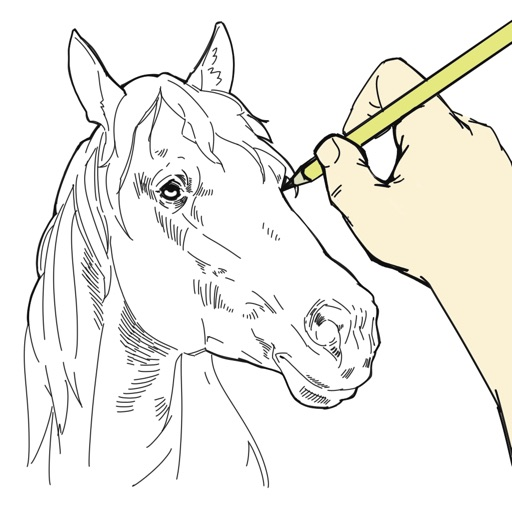 Paint Horse and Pony