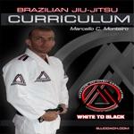 BJJ Coach CURRICULUM Jiu Jitsu