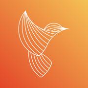 蜂鸟贵金属-黄金白银期货交易平台