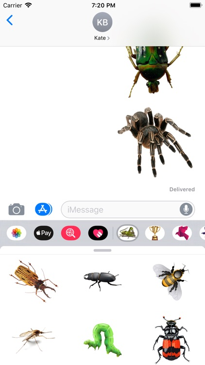 Insects Stickers screenshot-3