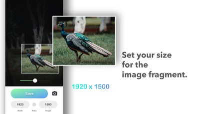 Resizable - Photo size screenshot 2