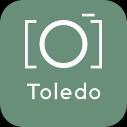 Toledo Guide & Tours