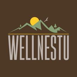 Wellnestu
