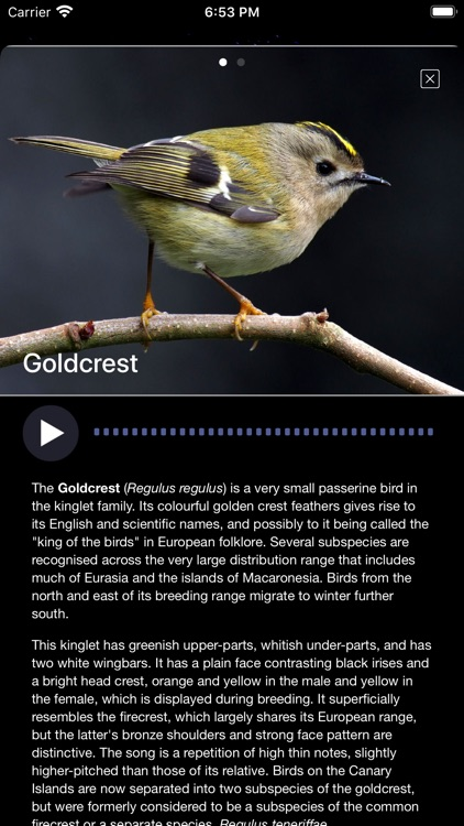 Bird Song/Photo Identification screenshot-6