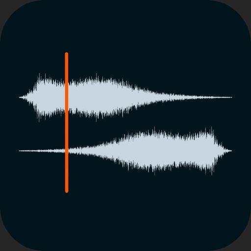 Auditor - Audio Editor