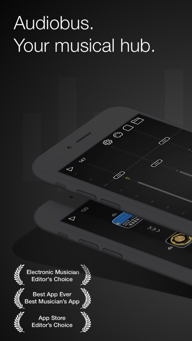 Audiobus: Mixer for music apps