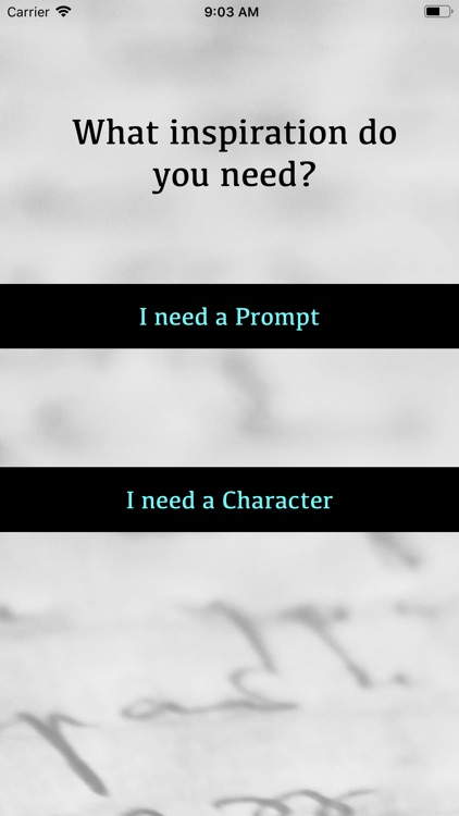 Random Prompt and Character