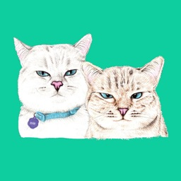 White & Cream Cat Stickers