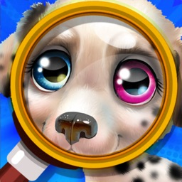 Hidden Objects Spot It Puzzles