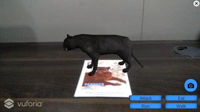 Animal 4d Game 4