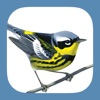 Sibley Birds 2nd Edition - iPhoneアプリ