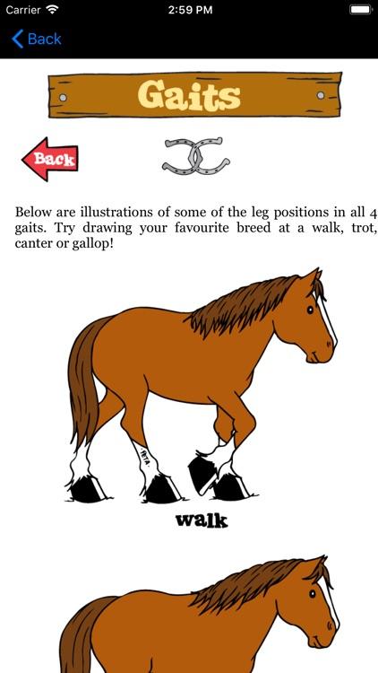 Drawing Horses Cartoon Project