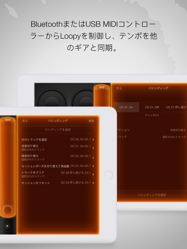 Loopy HD - ライブルーパー Screenshot