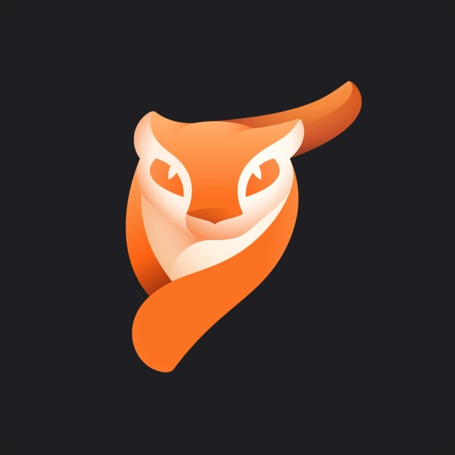 Enlight Pixaloop iOS App