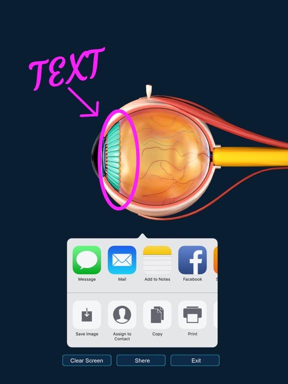 My Eye Anatomy screenshot 16