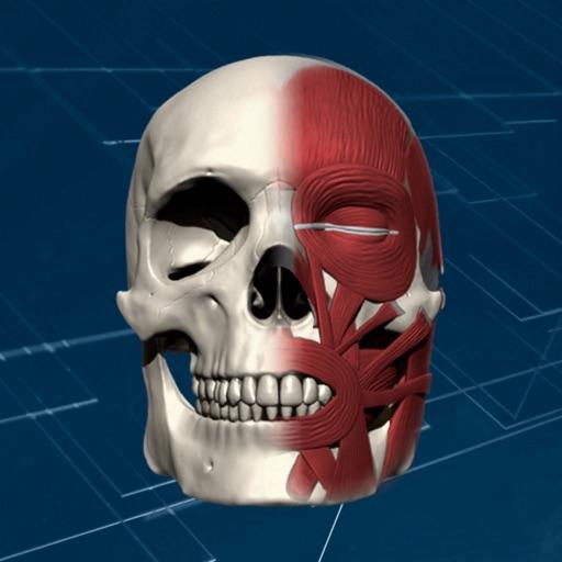 Baixar Face 3D Plus para iOS