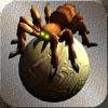 Spider ace warrior