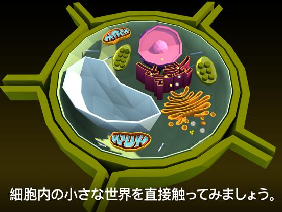 NAMOO – 植物の神秘のおすすめ画像4