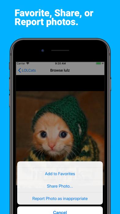 LOLCats Premium screenshot three