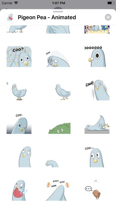 Pigeon Pea - Animated screenshot 2