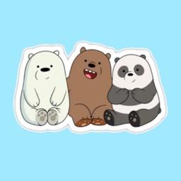 We Are Bear V2