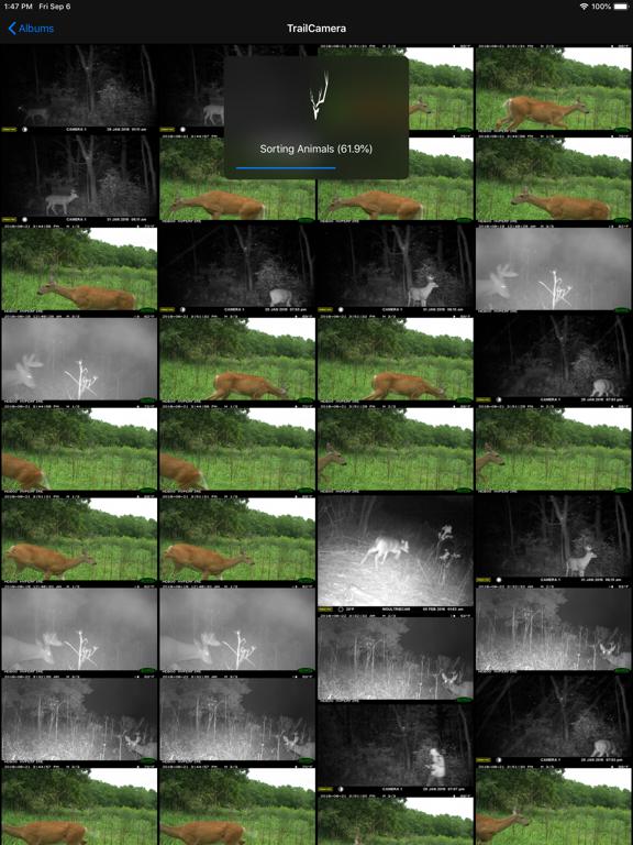 BuckSort screenshot 5