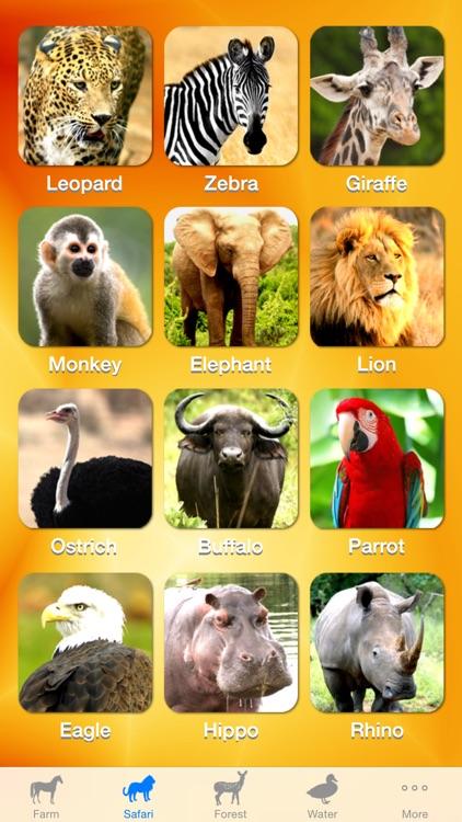ZOOLA Animals screenshot-4