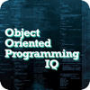 Robert Lewis - Object Oriented Programming IQ  artwork