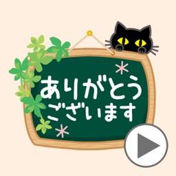 black cat(moving)