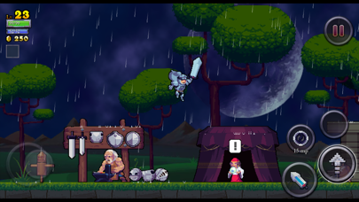 Screenshot from Rogue Legacy