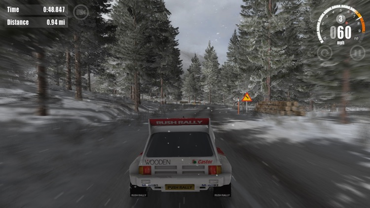 Rush Rally 3 screenshot-6