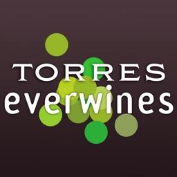 Shop Torres