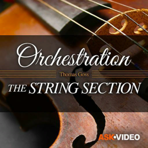 The String Section Course